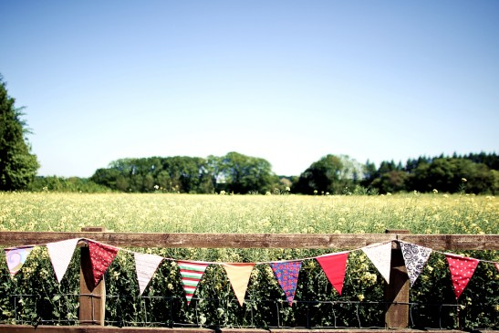 Bunting on Fields